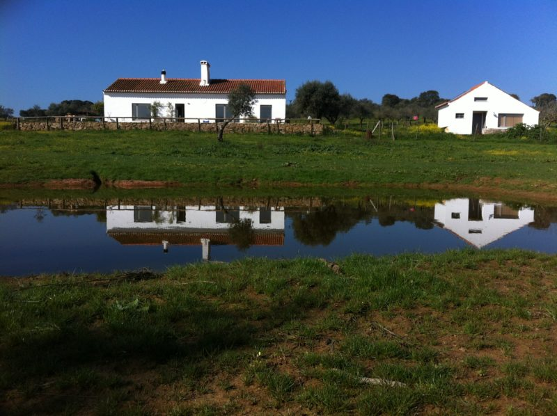 Rehabilitación de casa tradicional Alentejana. Barbacena, Portugal