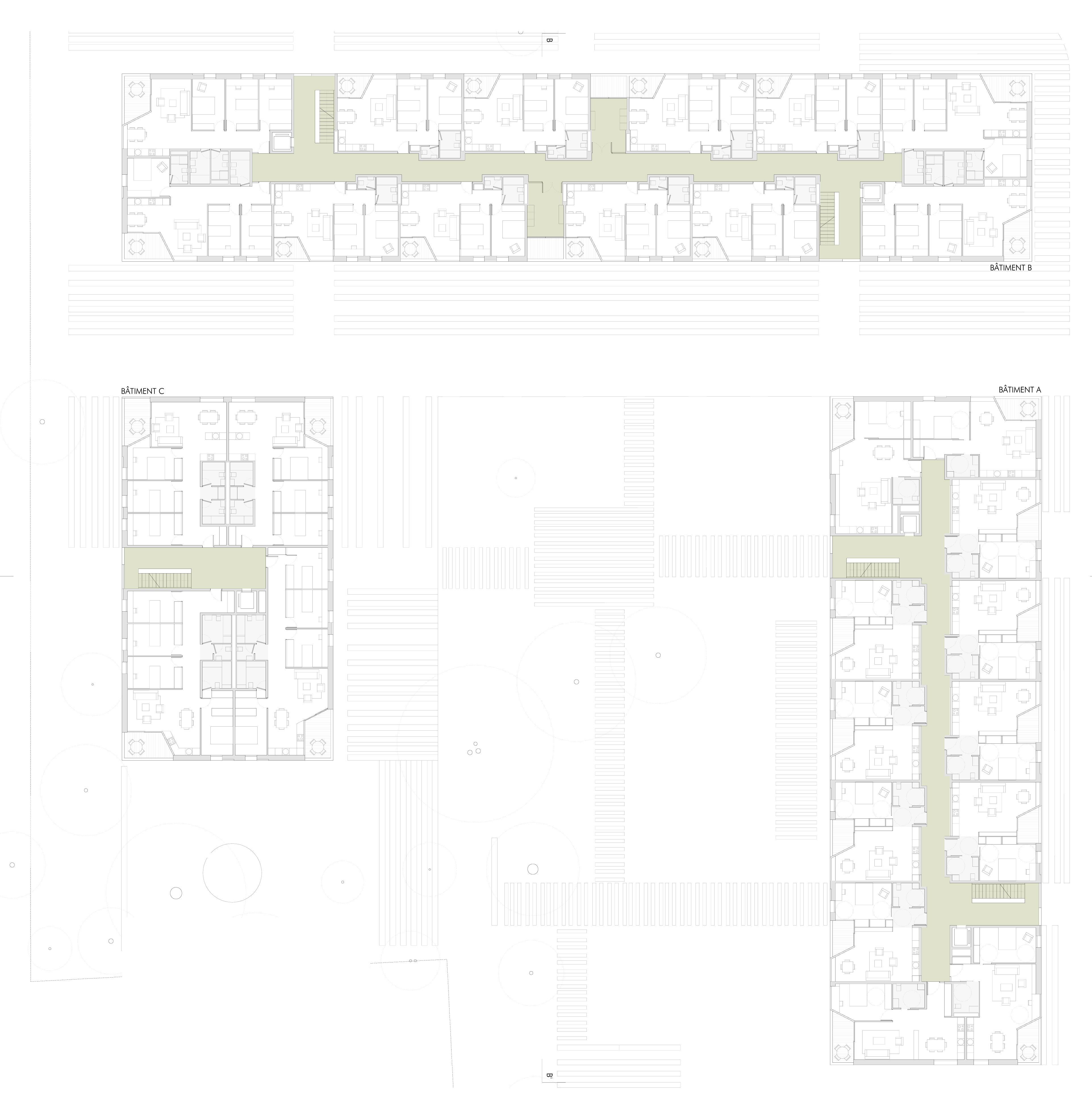 THONEX - Pez Arquitectos